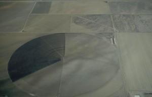 1767971cropcircle